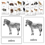 Wild Animals 3-Part Cards